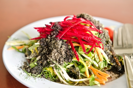 plate of fresh colorful  organic salad with black sesame dressing Stock Photo - 14205559