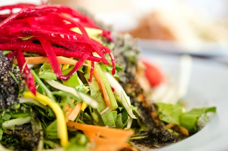 plate of fresh colorful  organic salad with black sesame dressing Stock Photo - 14205558