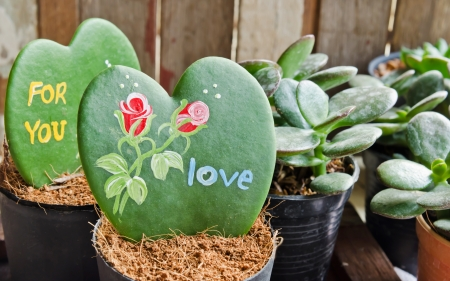 Heart shaped plant (Kerrii Hoya) with  painted roses  and message of love in pot. Valentines day theme .