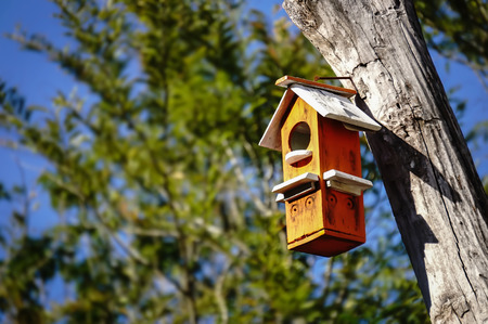 colorful wooden bird house hanging on a tree with text area Stock Photo