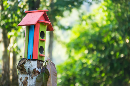 colorful wooden bird house on a tree with text area Stock Photo