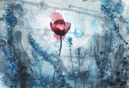 red poppy: watercolor illustration. red poppy flower