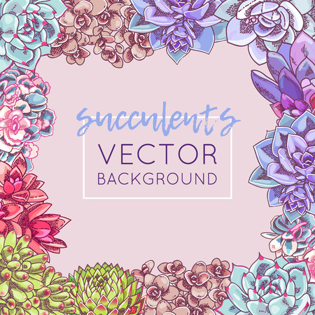 The illustration with beautiful succulents decoration. Vector floral design. Botanical frame template.