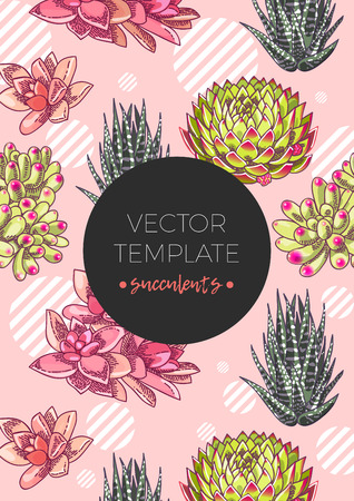 The illustration with beautiful succulents decoration. Vector floral design. Botanical background template.