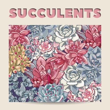 Colorful card design. Succulents vector decoration. Floral illustration.