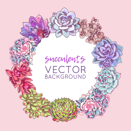 The illustration with beautiful succulents decoration. Vector floral wreath. Botanical background template.