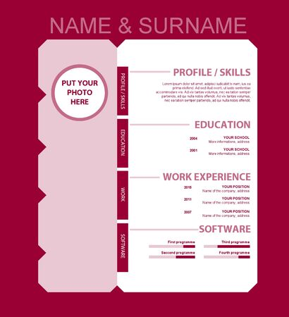 personal profile: Vector resume template for business or non-profit organization