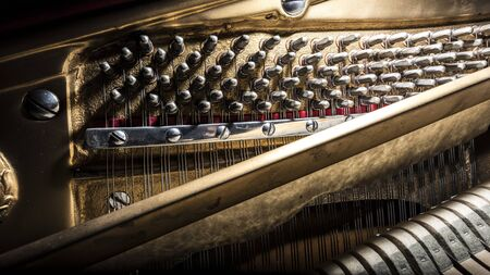 octaves: Inside a piano tuning parts