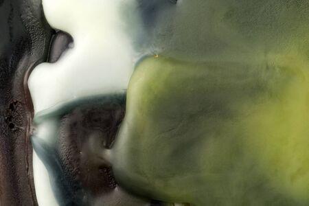 roundish: Wax macro closeup