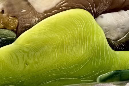 Wax macro closeup