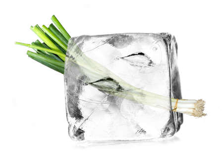leek, allium in a ice cube isolated with white background photo