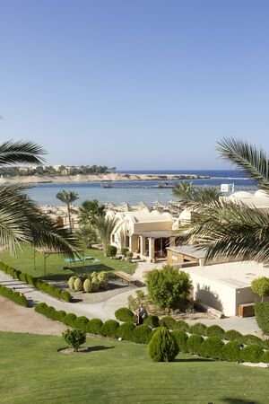 marsa: palms on sea in egypt with green space