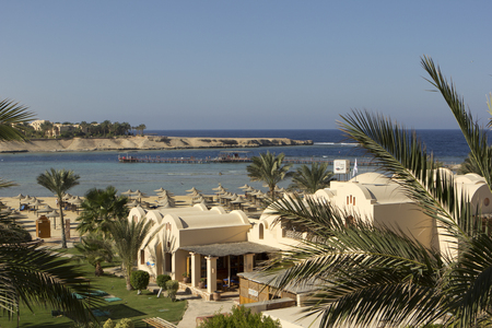 marsa: Palm trees and buildings in Egypt with sea and beach in the background