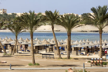 Palm trees and buildings in Egypt with sea and beach in the background  photo