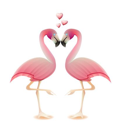 flamingos: Flamingos heart love valentine concept