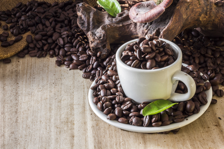 Coffee beans in coffee cup and leaves