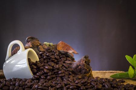 White cup pour coffee beans Reklamní fotografie