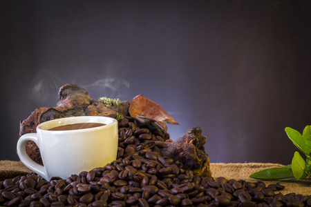 White cup and coffee beans and dark background Reklamní fotografie