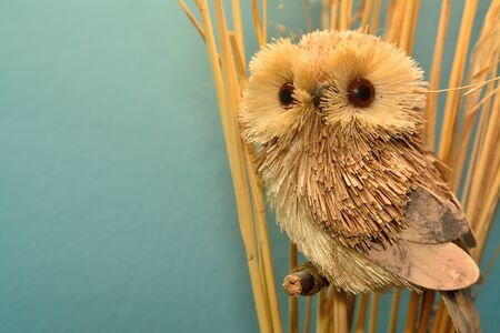 dry grass: Owl of straw with dry grass on a blue background