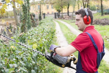 man wearing  ear protectors trimming the bush in the backyard with petrol  bush trimmer