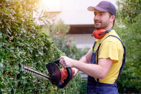 paysagiste: Jardinier en utilisant une tondeuse haie dans le jardin Banque d'images
