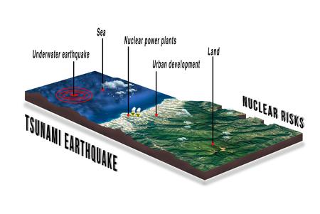 Tsunami earthquake effects on a nuclear power plant