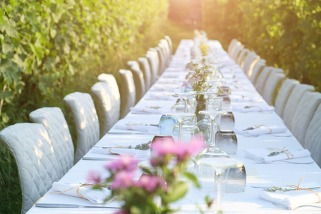 Party table set for social event in the countryside