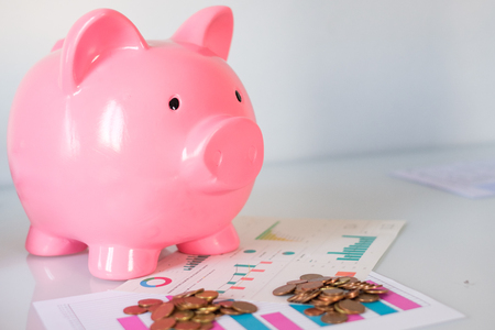 Piggy bank with finance sheet and money currency savings concept 免版税图像