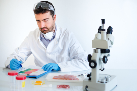 Researcher wearing safety goggles and white coat analyzing quality of GMO meat sample while standing at modern laboratory Reklamní fotografie