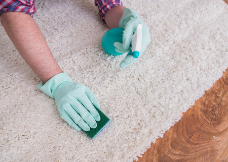 Wiping wooden white carpet and floor with a sponge