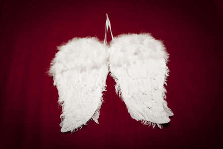 angels wings on red velvet background photo