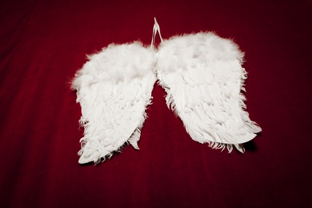 angel's wings on red velvet background Stock Photo - 9733899