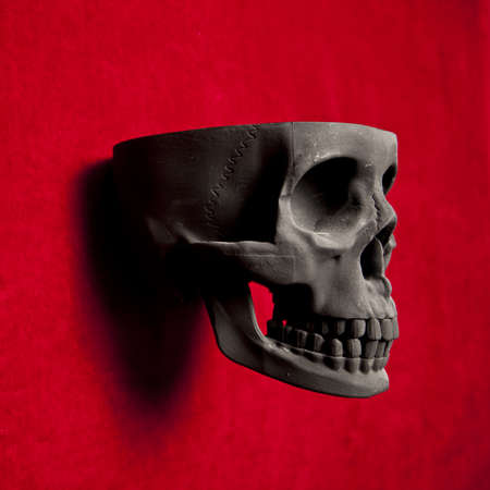 black scary human skull on red velvet background Stock Photo - 9733665