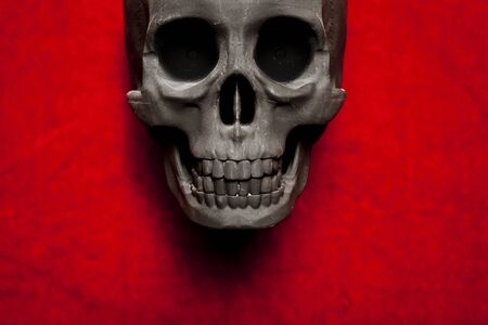black scary human skull on red velvet background Stock Photo - 9733870