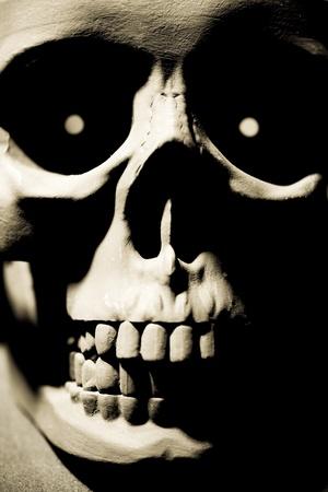 black skull Stock Photo - 9839735