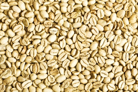 green unroasted coffee beans Stock Photo - 9842825