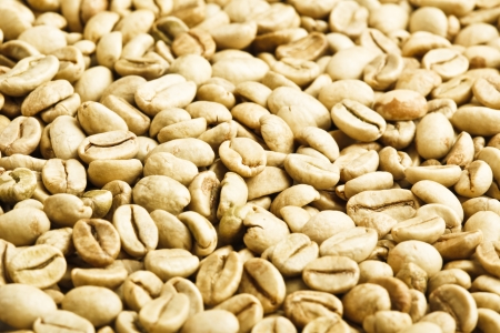 green unroasted coffee beans Stock Photo - 9842543