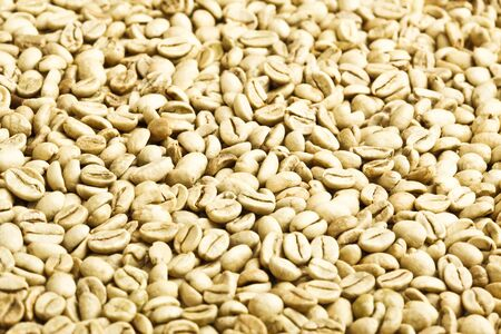 green unroasted coffee beans Stock Photo - 9842812