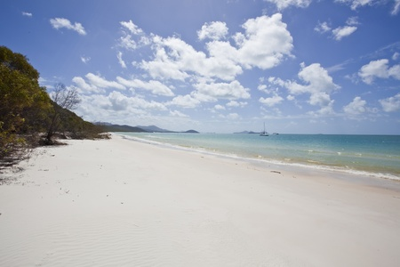 whitsundays island australia photo