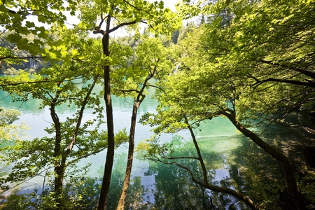 Plitvice lakes national park in Croatia, nature travel background Stock Photo - 10875566