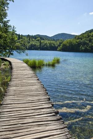 woods lake: Percorso in laghi di Plitvice, Croazia Archivio Fotografico