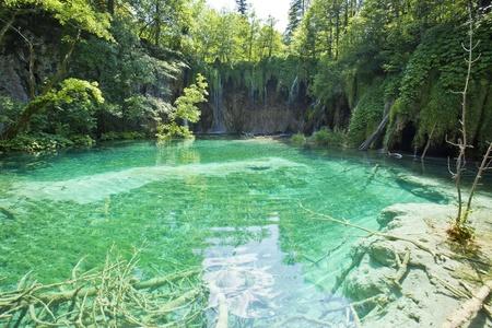 Beautiful forest waterfall in Plitvicka jezera Croatia photo