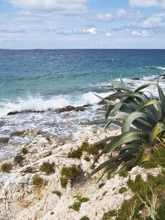 agave: hermosa playa rocosa en Croacia