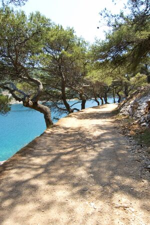 beautiful coastal dirt road in croatia photo