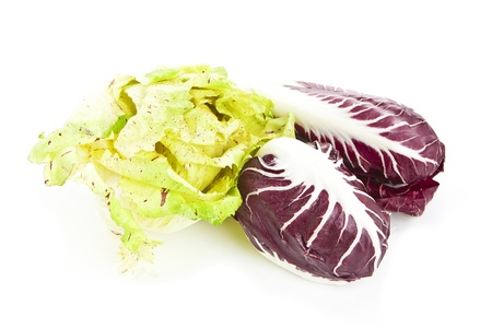radicchio: red and green chicory radicchio isolated over white