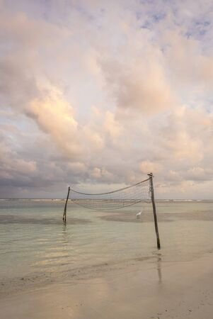beach volley: beach volley net on the sea at sunset