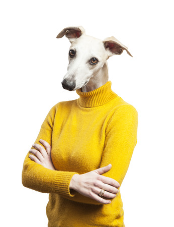 anthropomorphic dog portrait. woman body with grayhounds head Stok Fotoğraf