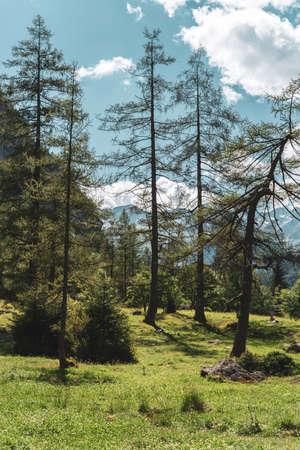 Mountain landscape in north Italy, Val di Mello Stock fotó