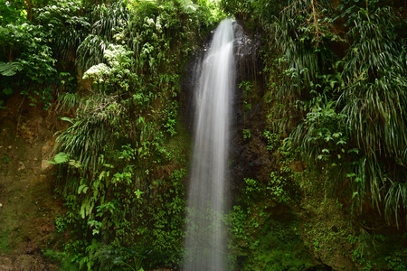 Long exposure of a waterfall in the forest in Saint Lucia