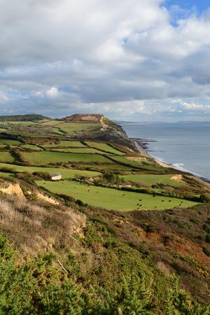 Scenic view of Golden cap mountain in Dorset Reklamní fotografie
